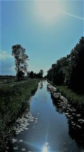 kanał - Ostrowo